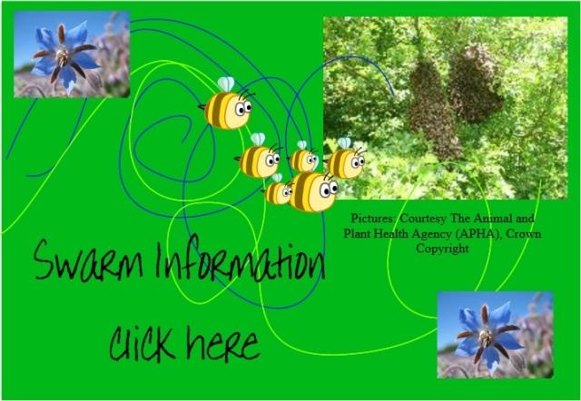 Swarms info.jpg